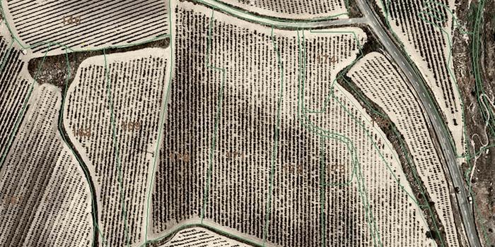 Imagen aérea de un campo agrícola.