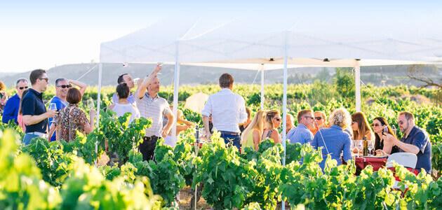 Enoaventura Rioja Alavesa