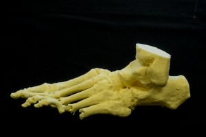 Réplica en 3D de un pie