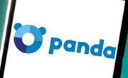 panda history