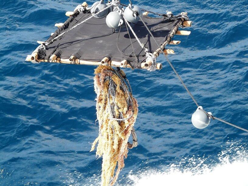 Nuevos dispositivos biodegradables para una pesca de atún más respetuosa con el ecosistema marino