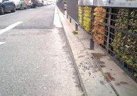 Vitoria-Gasteiz ha instalado un sistema que usa el musgo como filtro para mejorar la calidad del aire