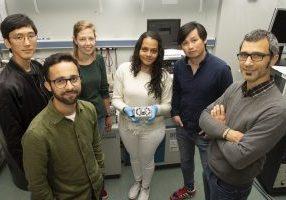 El equipo de CIC NanoGUNE que ha desarrollado el proyecto.