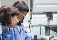 GAIKER-IK4 dugu nanomaterialak taldekatzeko lanaz arduratuko den erakundea